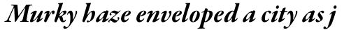 Garamond Premr Pro SubHead Bold Italic sample