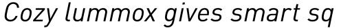 FF DIN Pro Italic sample