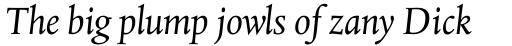 Albertina Pro Italic sample