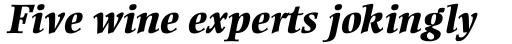 Ellington Std ExtraBold Italic sample