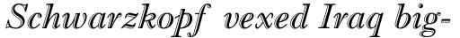 Imprint Std Shadow Italic sample