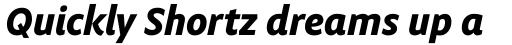 Obliqua Pro Bold Italic sample