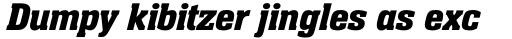Neue Aachen Std SemiBold Italic sample