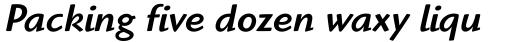 Highlander Medium Italic OS sample