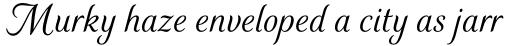 Elicit Script Regular sample