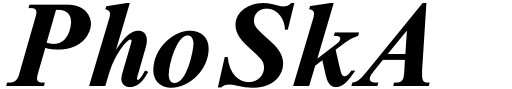 Times New Roman Std Seven Bold Italic Sample