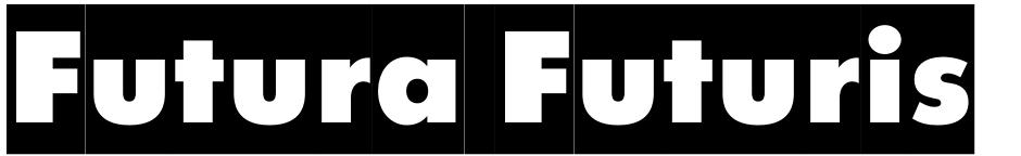 Click to view  Futura Futuris font, character set and sample text