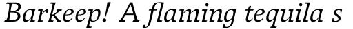 Breughel Pro 56 Italic sample