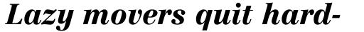 Linotype Centennial Std 96 Black Italic sample