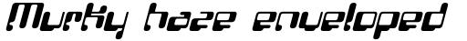 FF Localizer Sans Italic sample