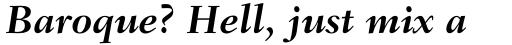 Fairfield Std 76 Bold Italic sample