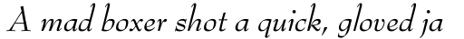 Bernhard Modern Italic sample