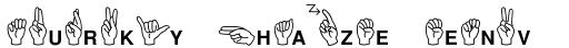 Mini Pics ASL sample