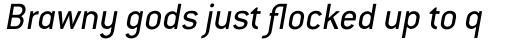 Conduit Italic sample