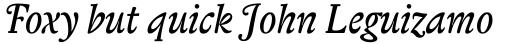 Biblon Swash Italic sample