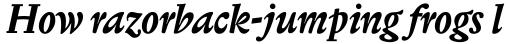 Biblon Swash Bold Italic sample