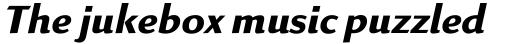 Linex Sans Bold Italic sample