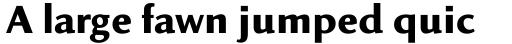Linex Sans Bold sample