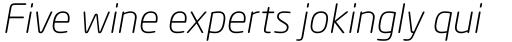 Neo Sans Light Italic sample