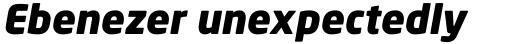 Neo Sans Black Italic sample