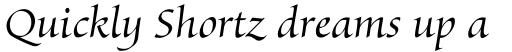 Byngve Std Italic sample
