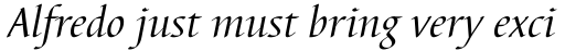 Barbedor Pro Italic sample