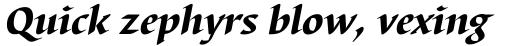 Barbedor Pro Heavy Italic sample