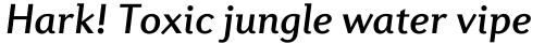 Diverda Sans Std Medium Italic sample