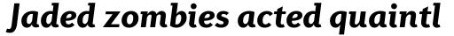 Diverda Sans Std Black Italic sample
