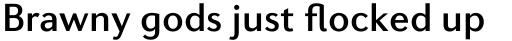 Diverda Sans Std Medium sample