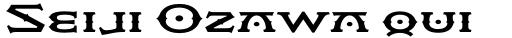 Flexion Pro Bold sample