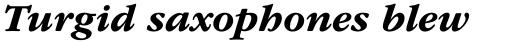 ITC Garamond Bold Italic sample