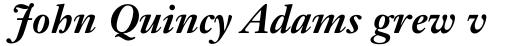 Janson Text Bold Italic sample