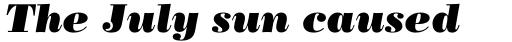Bodoni Poster Std Italic sample