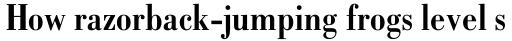 Bodoni Std Bold Condensed sample