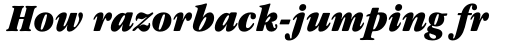 ITC Garamond Narrow Ultra Italic sample