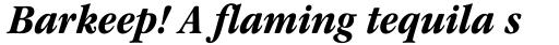 ITC Garamond Narrow Bold Italic sample