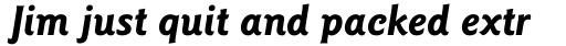 Goudy Sans Std Bold Italic sample