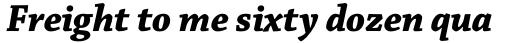 Chaparral Pro Bold Italic Subhead sample