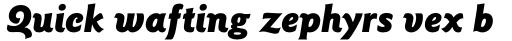 Goudy Sans Std Black Italic sample