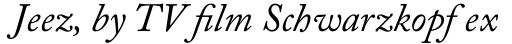 Adobe Caslon Pro Italic sample