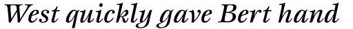 Esprit Std Medium Italic sample
