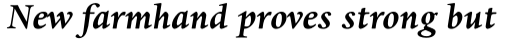 Dante MT Std Bold Italic sample