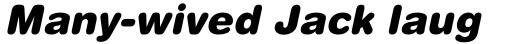 Helvetica Rounded Black Obl sample