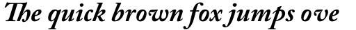 Adobe Caslon Pro Bold Italic sample