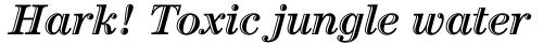 Century Std Handtooled Bold Italic sample