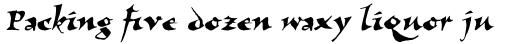 Visigoth Std Regular sample