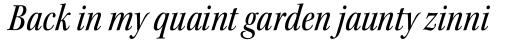 Kepler Std SubHead Cond Medium Italic sample