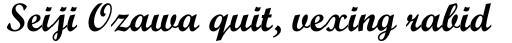 Script MT Std Bold sample