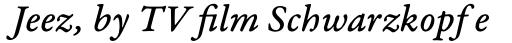 Garamond Premr Pro Caption Med Italic sample